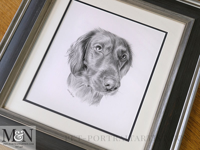 The Portrait of Bramble Framed