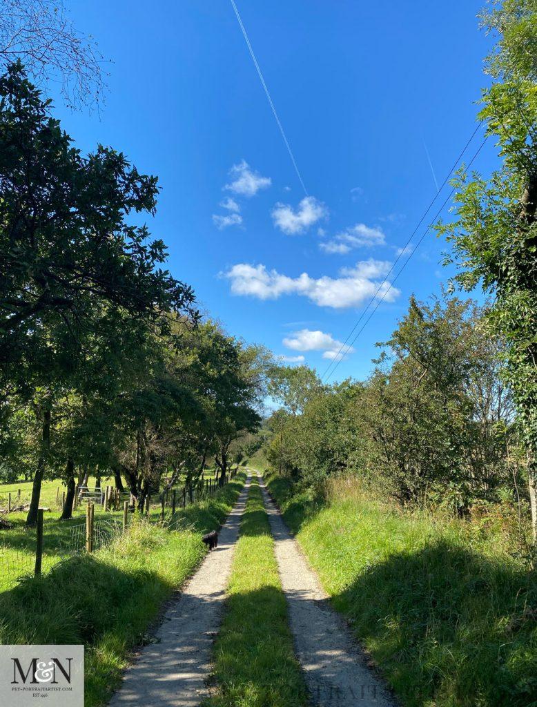 Little Lane Walk