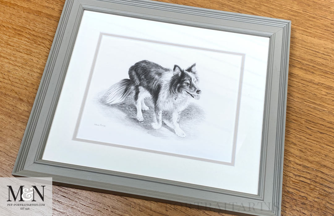 Melanie's October Monthly News -Domino's Pencil Drawing