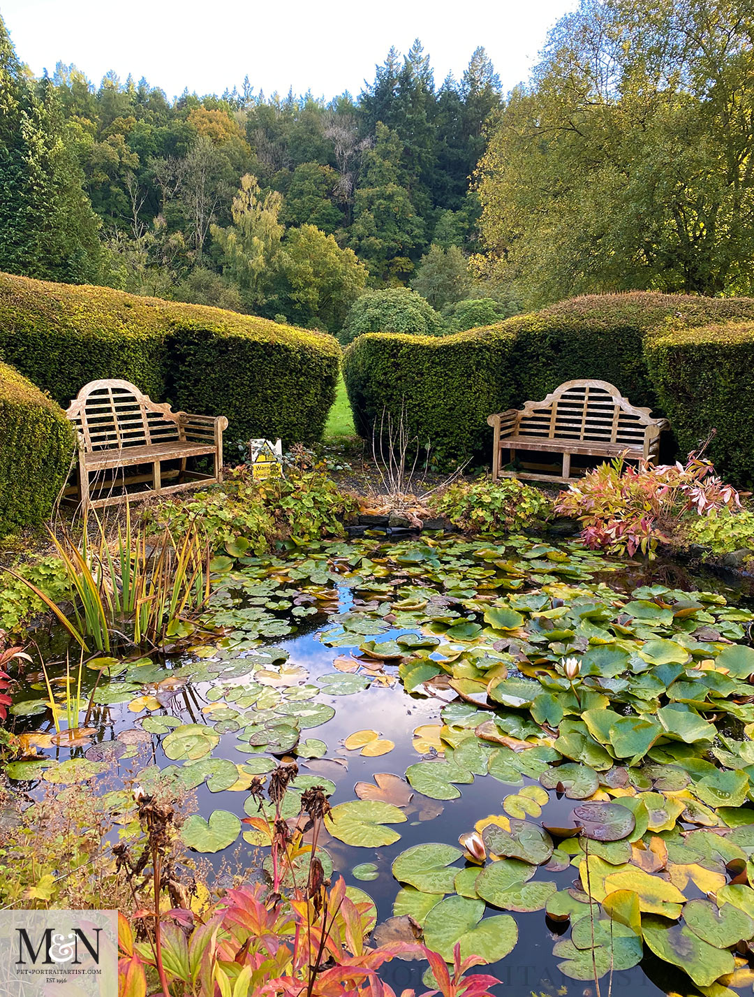 Pond seating