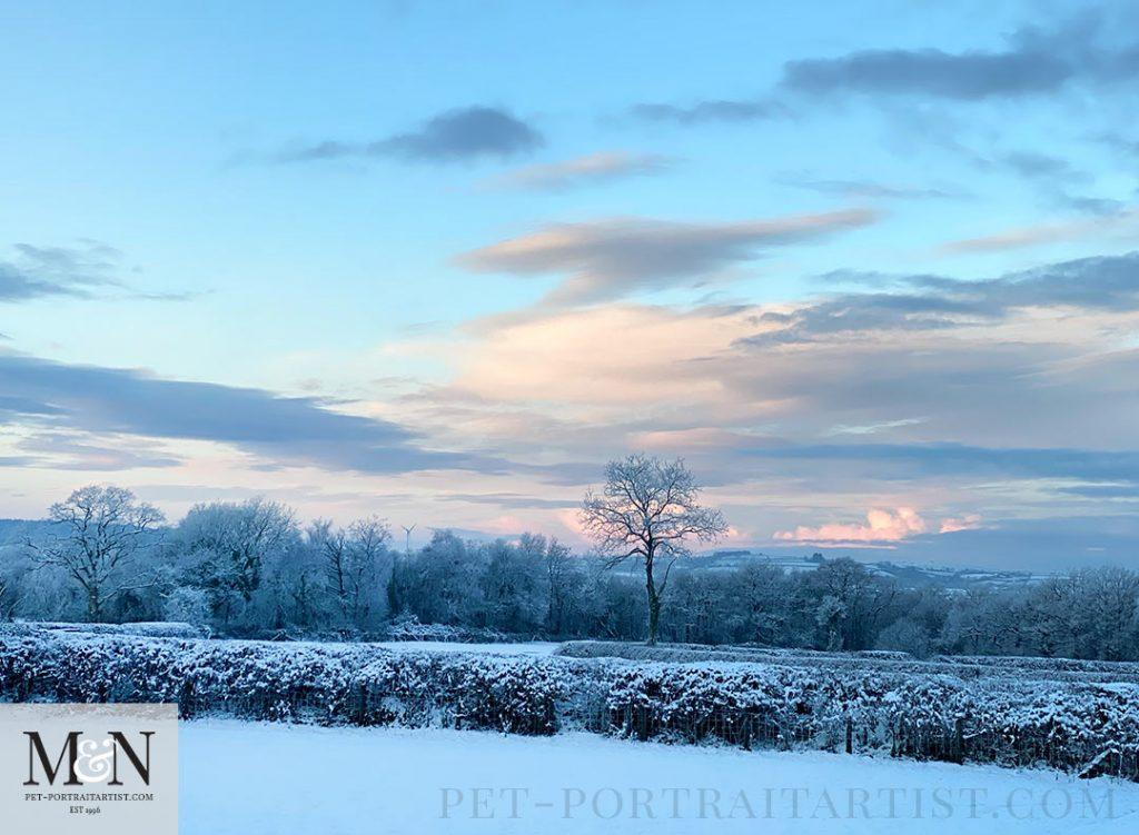 Melanie's December Monthly News - Early Morning Snow Walk