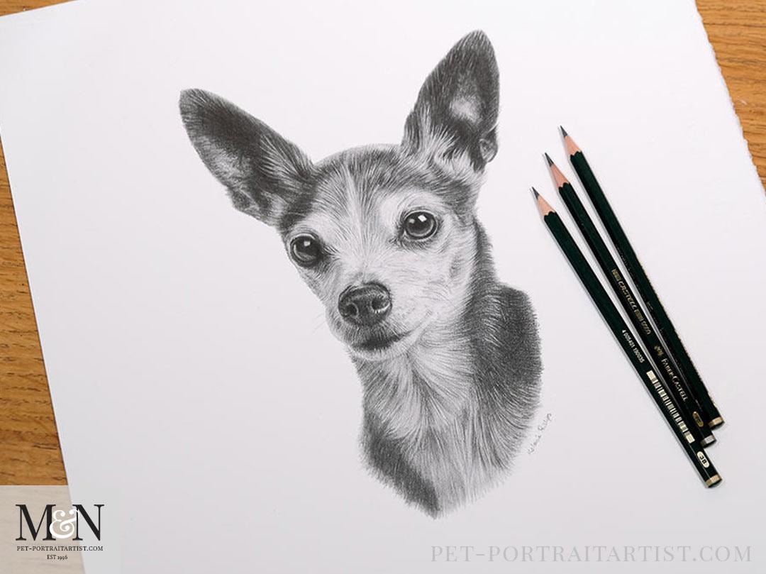Jaspers pencil portrait