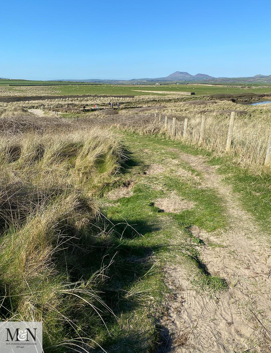 Melanie's April Monthly News - Coastal path views