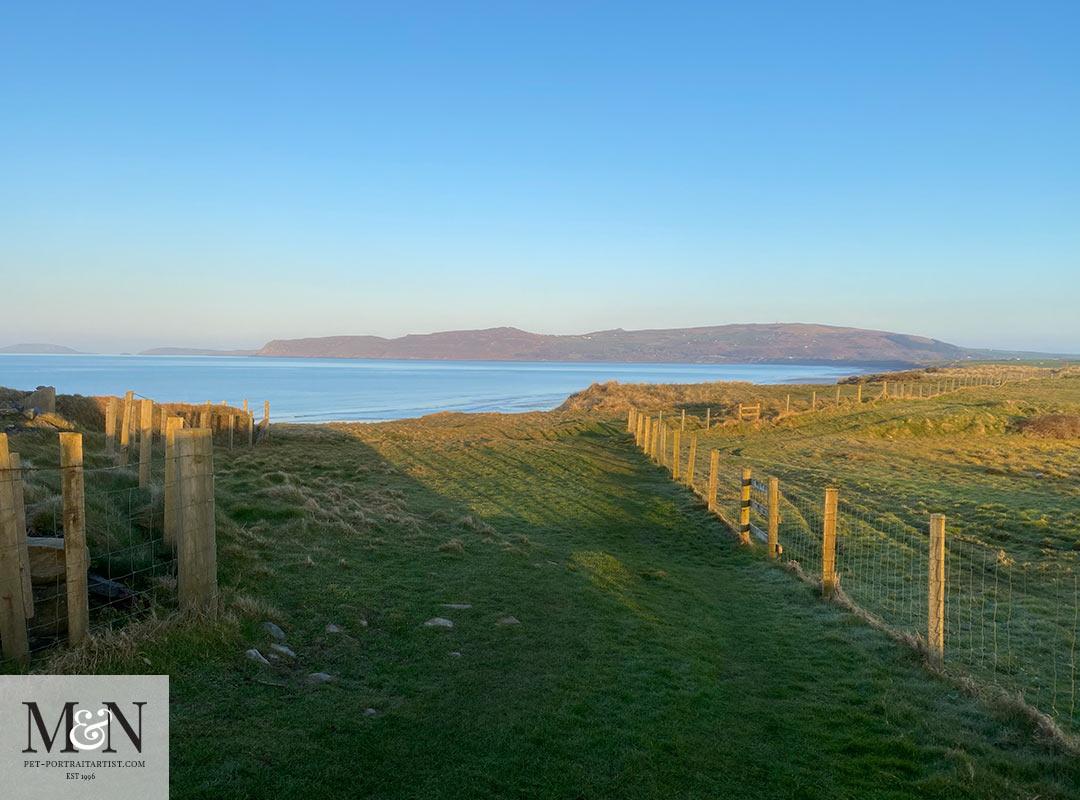 Coastal path run