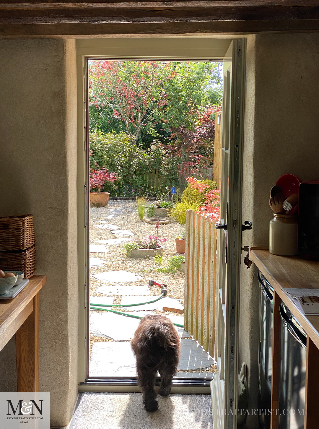Melanie's July Monthly News Cottage and garden