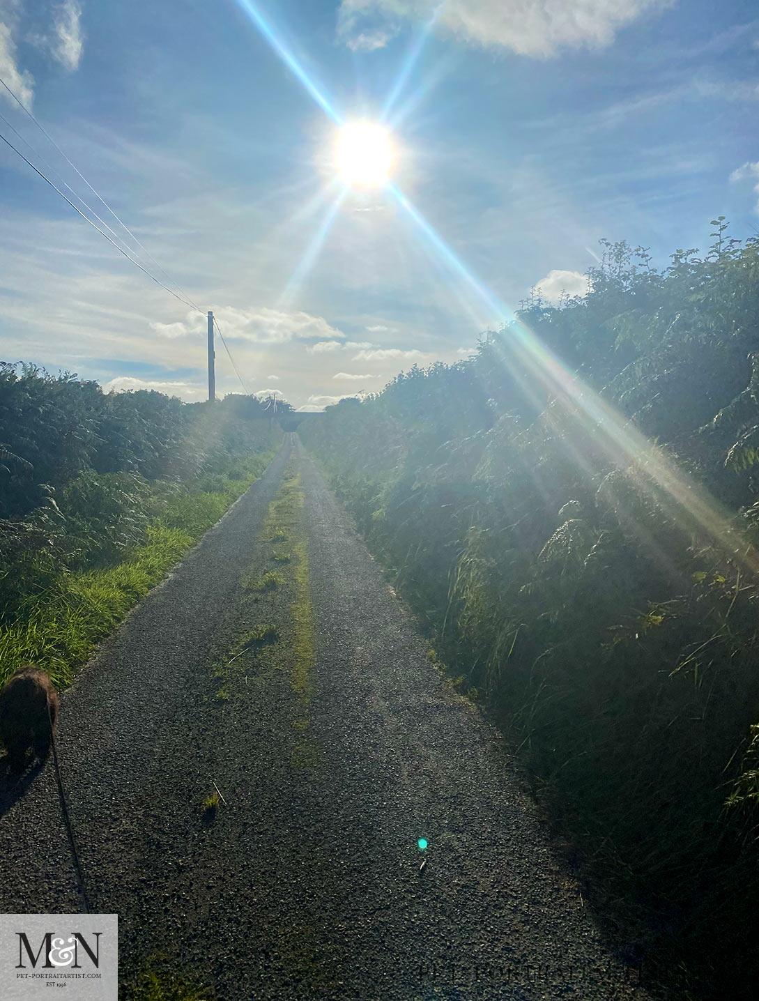 Lane walk